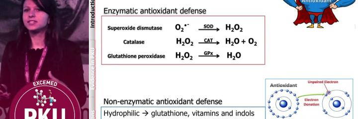 Oxidative stress: the evidence in PKU Priscila Mazzola, The Netherlands